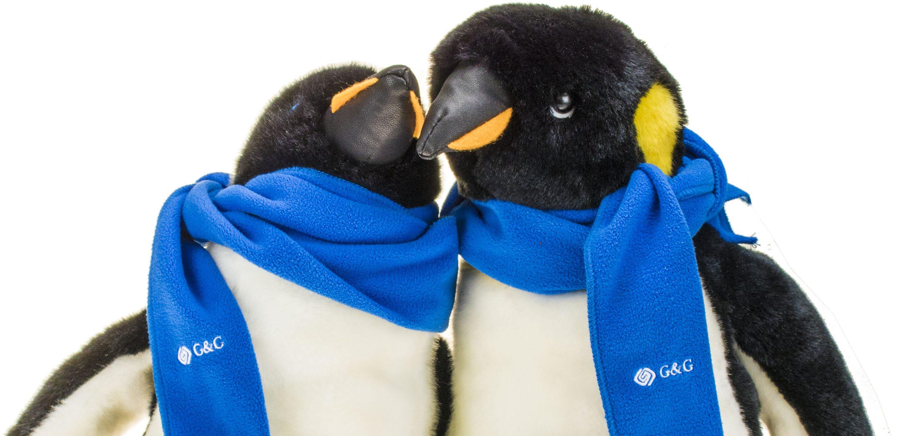 Einer der Pinguine wird wohl Gustav heißen. Doch wie heißt der zweite Pinguin?
